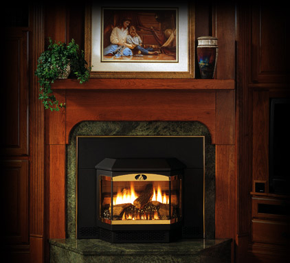 Fireplace Blower Propane Gas Fireplace Insert With Blower